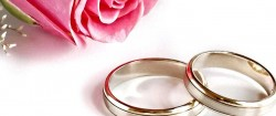 Pink-Rose-With-Wedding-Rings